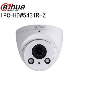 Dahua WDR IR Dome IP Camera Eco-savvy 3 0 Series